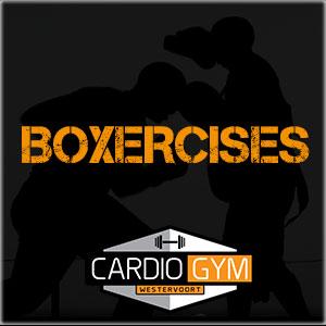 Boxercises